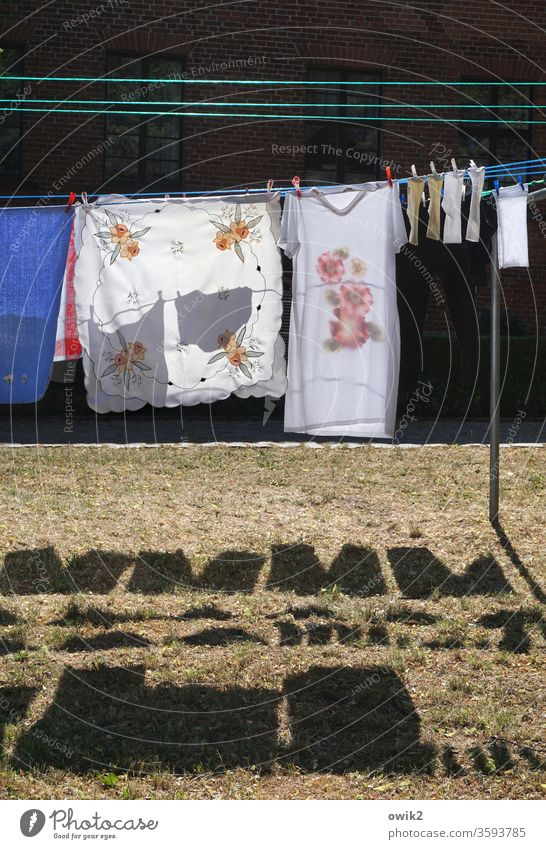 washing day Laundry Textiles Washing day hang Clothesline Meadow Shadow Clothes peg tablecloth socks Night dress Contrast Sunlight Dry Clean Colour photo