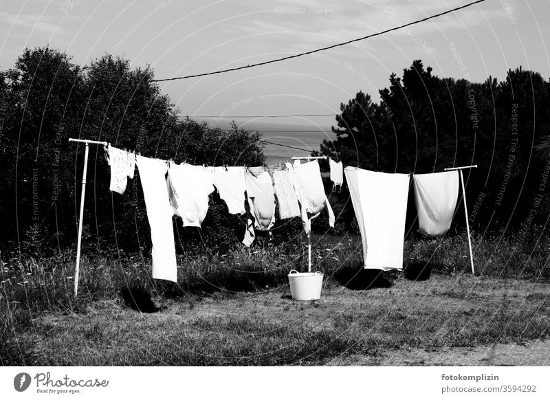clothesline in the garden with basket Clothesline Laundry Household Washing Clean Dry Housekeeping Washing day Hang up Living or residing Clothing hang
