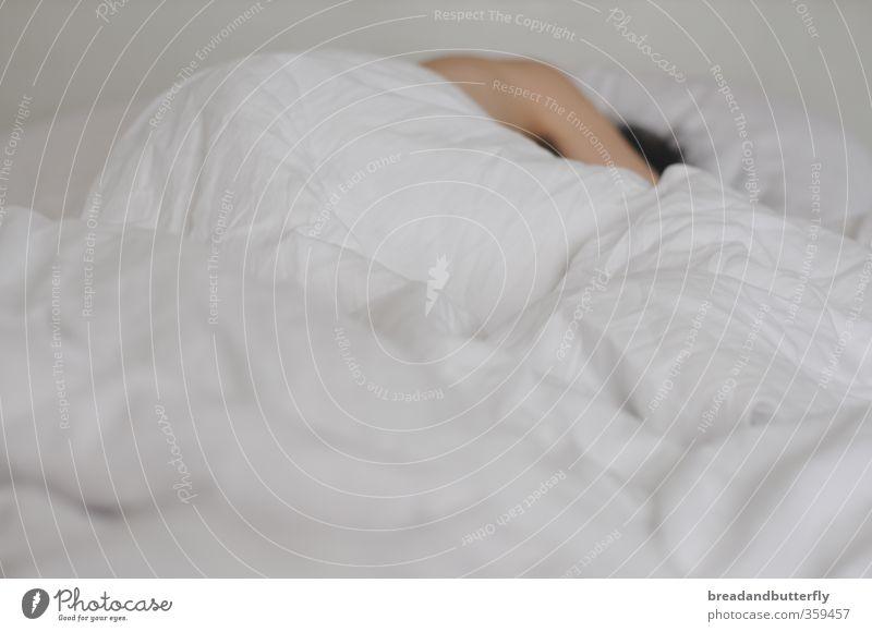 sleep late Bed Duvet Human being Masculine 1 Sleep Bright Cuddly White Warm-heartedness Fatigue Interior shot