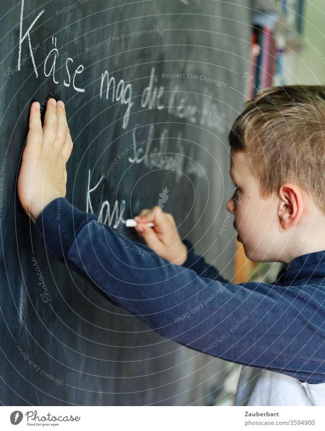 Homeschooling V - Boy writes with chalk on a blackboard a practice set for cursive writing School Boy (child) pupil schuler Elementary school Blackboard Chalk