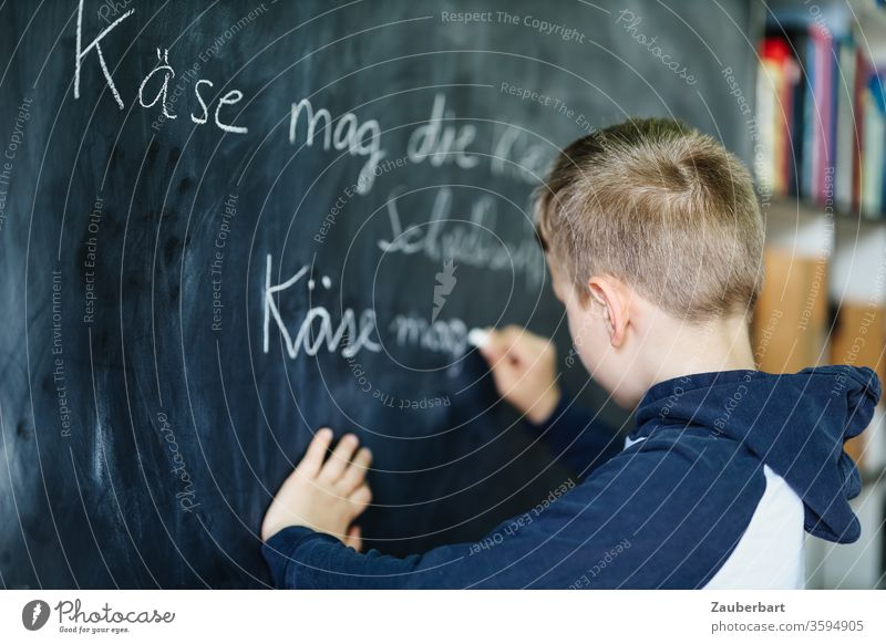 Homeschooling III - Boy writes with chalk on a blackboard a practice set for cursive writing, in the background bookcase School Boy (child) pupil schuler