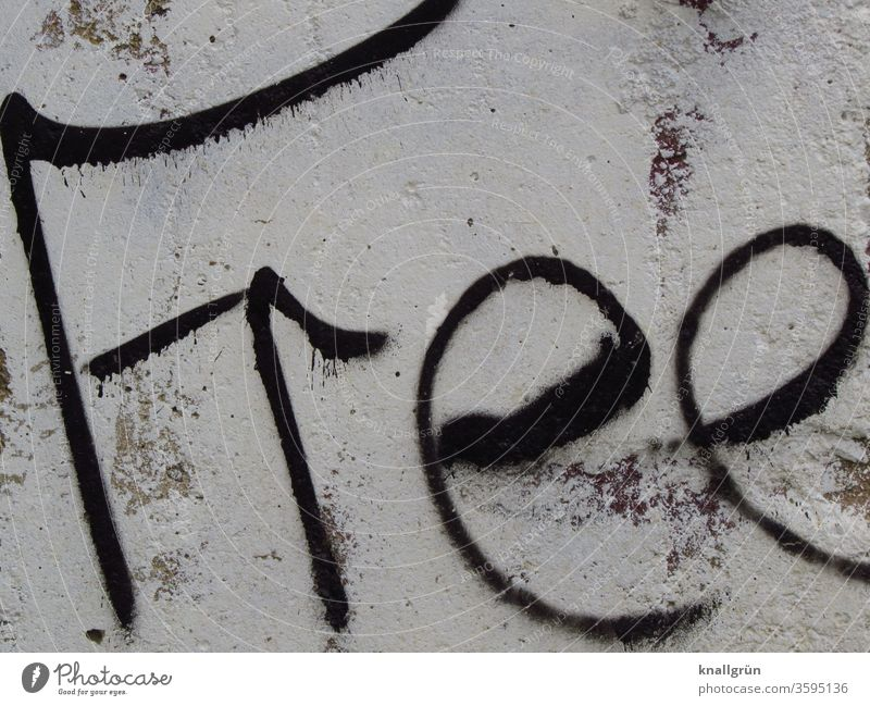free Graffiti Free Freedom Exterior shot Wall (building) Letters (alphabet) Word Characters Typography Daub Street art Text Art Handwriting letter Language