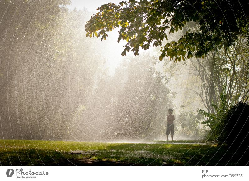 left standing in the rain Human being Boy (child) 1 Nature Landscape Sun Summer Climate Climate change Beautiful weather Bad weather Rain Tree Grass Meadow