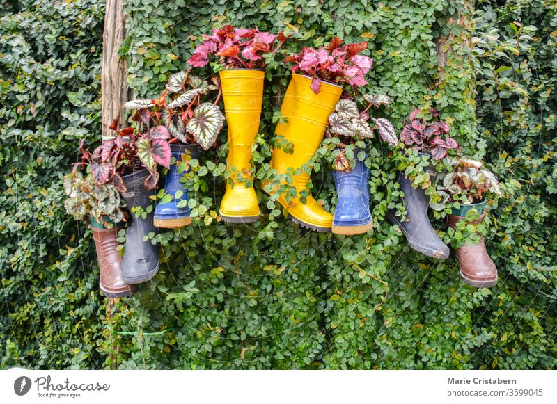Recycle and reuse rain boots, ideas to reduce waste and pollution in celebration of Earth Day environmentalism recycle and reuse ideas earth day reduce garbage