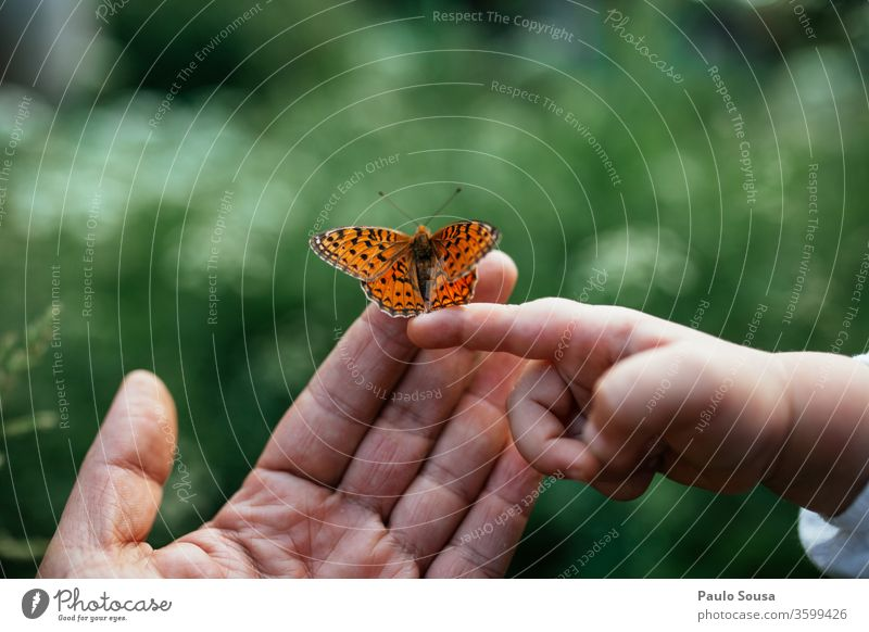 Close up hands With butterfly Father Father with child Child Family & Relations Natural Nature Hand Infancy Human being Adults Girl Toddler Love Parents Joy