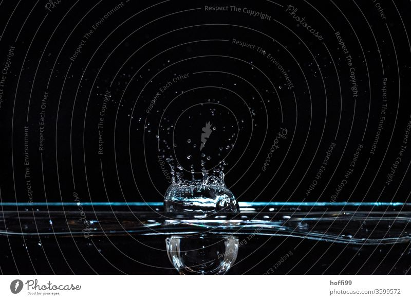 Water tropics fall and create figures Wet Drop Drops of water Blue Waves Surface of water Flash photo hovering Black Hover Refraction To fall Fluid Close-up