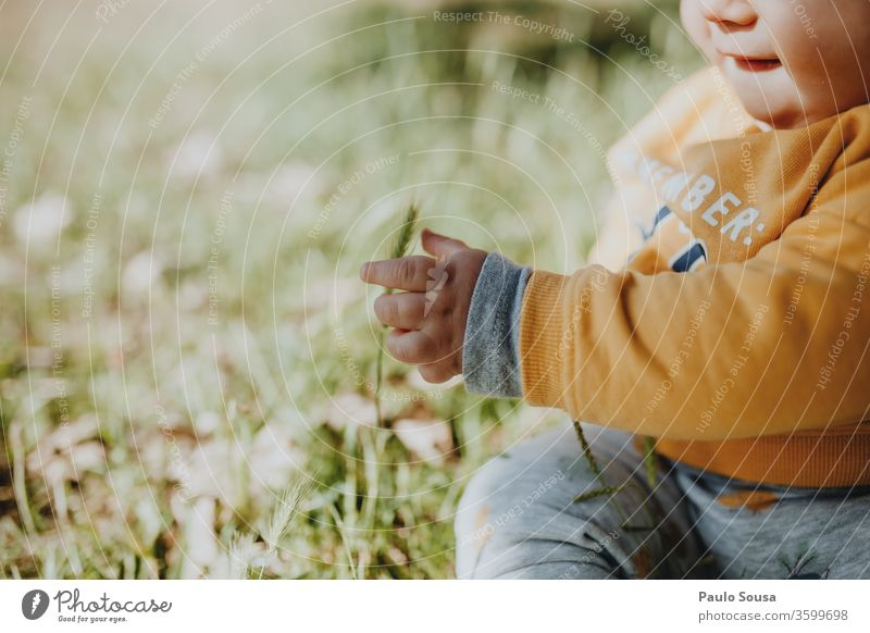 Child playing with grass Baby babyhood Toddler 0 - 12 months Caucasian Summer Spring Colour photo Human being Infancy Beautiful Cute Happy Exterior shot