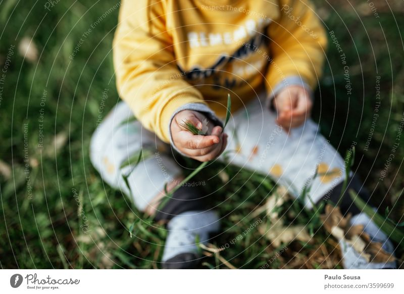 Toddler sitting on grass Baby Child childhood Curiosity Innocent Discover Colour photo Infancy Human being Exterior shot 0 - 12 months Happiness Nature