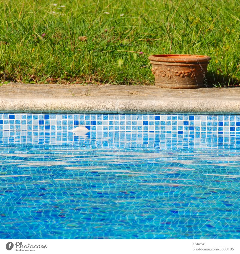 Pot by the pool Swimming pool swimming pool Water Basin Pottery Grass Meadow edge Intersection Pool border Swimming & Bathing Wet Flowerpot Tile Blue green