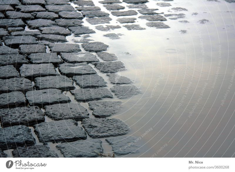 half dry half wet Lanes & trails Paving stone Puddle Street Cobblestones Traffic infrastructure Water Wet Gray Pavement Stone Sidewalk Structures and shapes