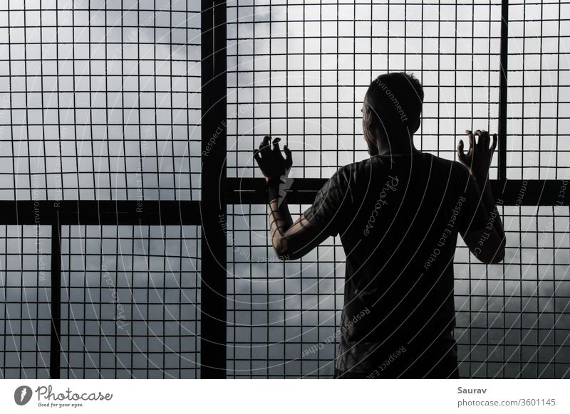 Young Man in self isolation / quarantine at home looking outside of a mesh grid window during global pandemic. Young man Youth (Young adults) coronavirus Corona