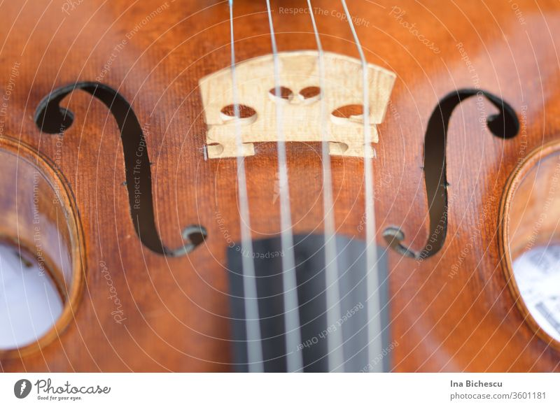 A violin photographed from above and very close up. You can see the bridge, the F holes, a part of the metal sides, a part of the light wood body and a part of the black fingerboard of the instrument.