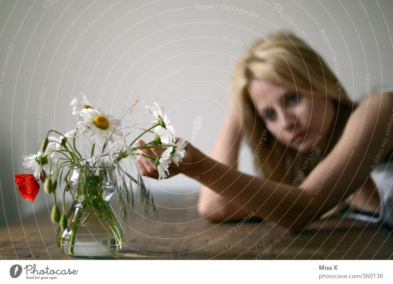 Human being Woman Youth (Young adults) Loneliness Young woman Flower 18 - 30 years Adults Feminine Emotions Sadness Moody Meditative Arm Blossoming Grief