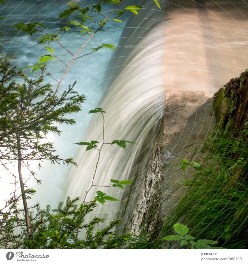 Nature Water Summer Plant Landscape Forest Mountain Stone Waves Power Beautiful weather Energy Speed Concrete Elements Branch