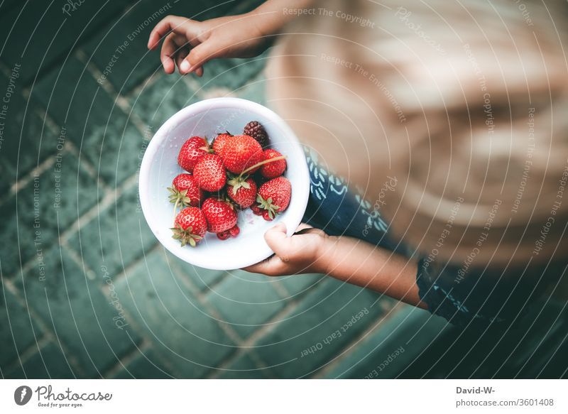 a small bowl of red berries collected by myself girl shell Strawberry strawberry Fruity Red Delicious salubriously vitamins Garden fruit Fresh Food Colour photo