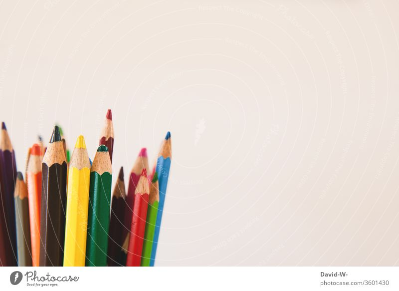 Coloured pencils against a white background crayons pens colors colourful Painting (action, artwork) creatively Creativity flaked Piece of paper Copy Space