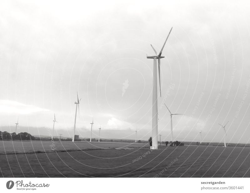 producer. Wind Pinwheel Wind direction Wind energy plant Energy industry Exterior shot Renewable energy Sky electricity Environment Environmental protection