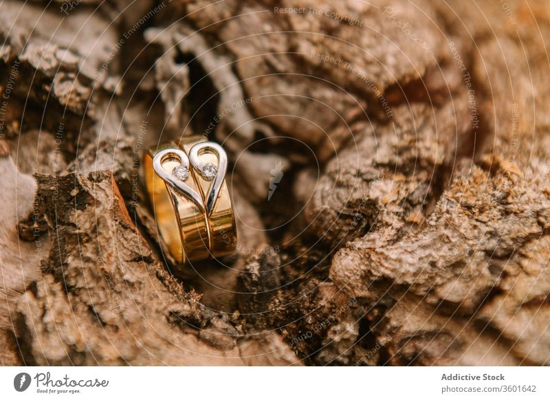Wedding rings on wooden surface wedding ceremony golden marriage love celebrate heart shape event symbol romantic tradition engagement elegant jewelry shiny