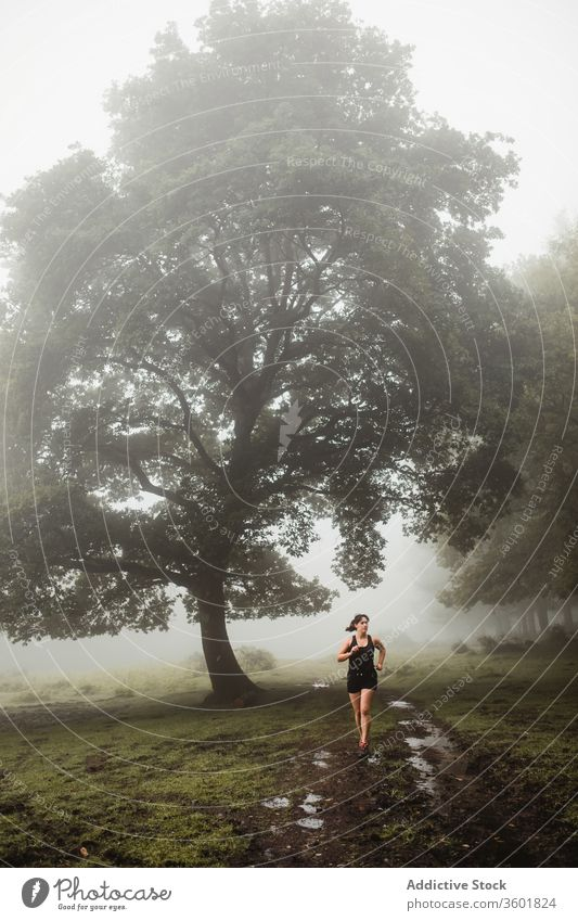 Fit woman running along path in misty forest sportswoman runner fit athlete wood training morning workout female sportswear wet pathway healthy fitness dirty