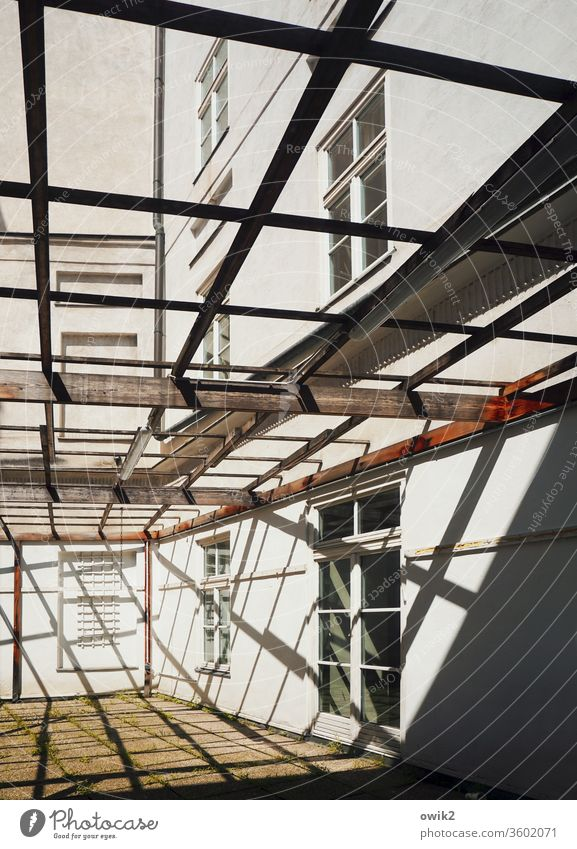 pergola Scaffolding House (Residential Structure) Building Illuminate Firm Town Construction site Exterior shot Detail Deserted Light Shadow Contrast Vienna