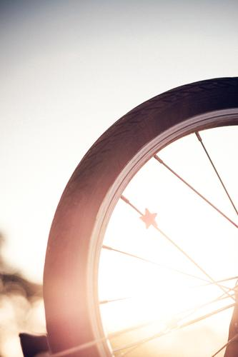 Wheel and Stars wheel Starling Back-light bike Bicycle golden hour Free space above depth of field Summer Exterior shot Sunset Evening Colour photo Deserted