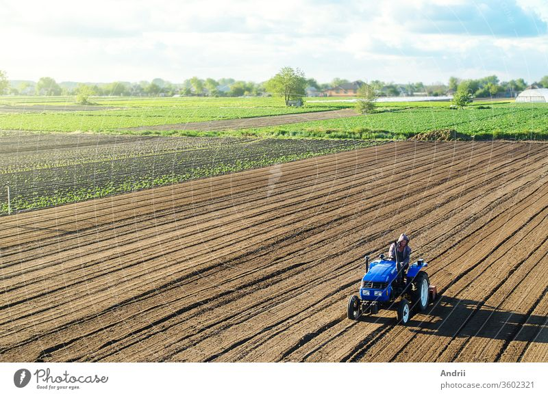 Farmer on a tractor cultivates a farm field. Grinding and loosening soil, removing plants and roots from past harvest. Field preparation for new crop planting. Cultivation equipment. Rural countryside