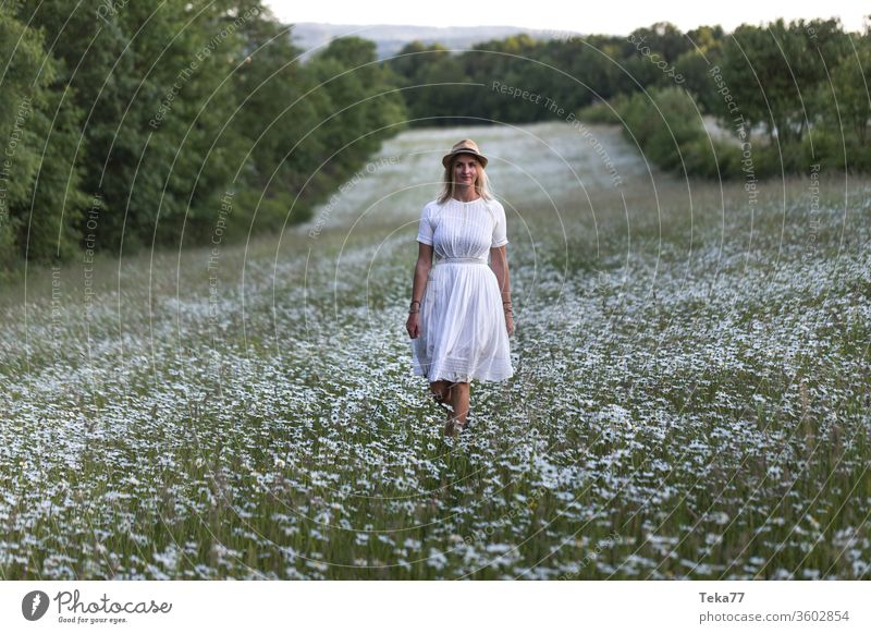 beautiful blond woman in a white flower field outdoors flowers nature nature photography young woman young blond woman blond hair white dress