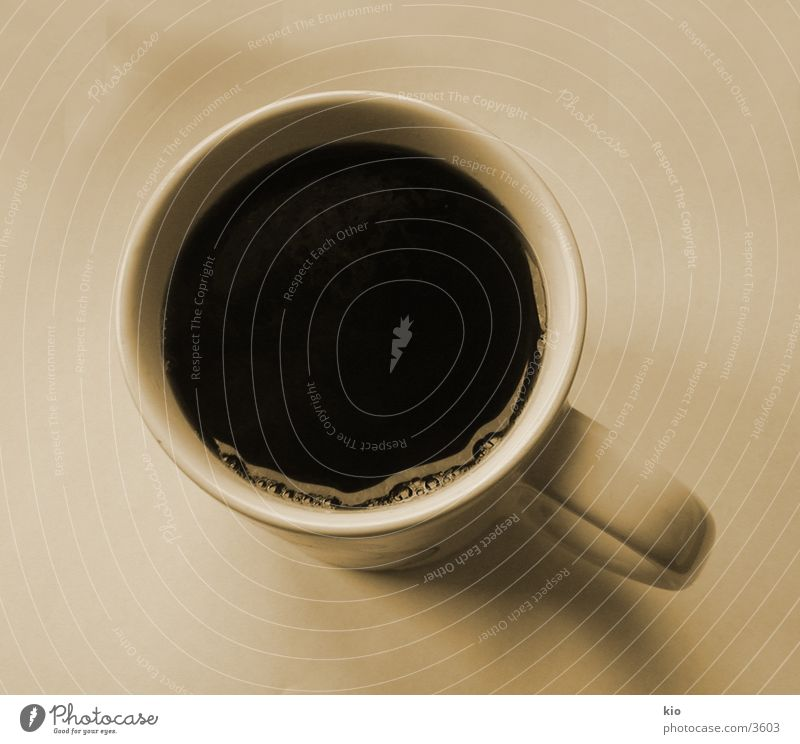 Coffee Cup Afternoon Photographic technology
