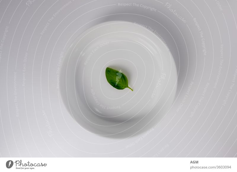 white bowl with basil leaf Food aromatic background bio closeup cuisine culinary delicious dish flavor fresh freshness green growth healthy herb herbal herbs