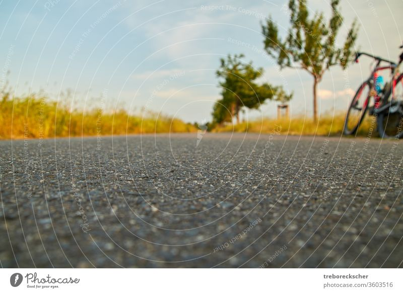 Evening break during a bike trip Cycle Bicycle off Asphalt Break Cycling Trip Deep Perspective view route Elbe cycle path tree Running Street Summer