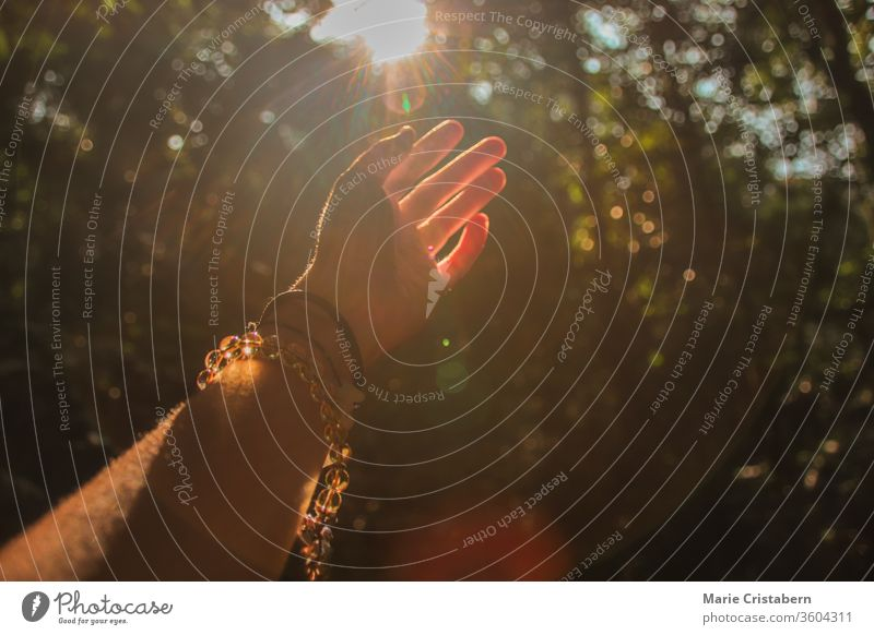Hands reaching out to the light coming from the forest to show concept of supporting mental health, healing in nature and fitness during the covid-19 pandemic