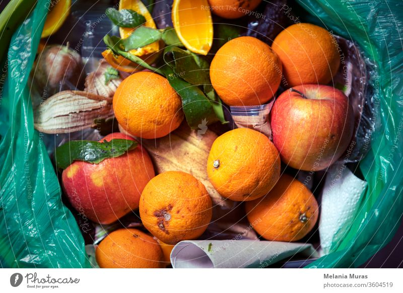 Food waste problem, leftovers Thrown into into the trash can. Spoiled food in refuse bin. Spoiled oranges and apples close up. Ecological issues. Garbage. Concept of food waste reduction. From above.