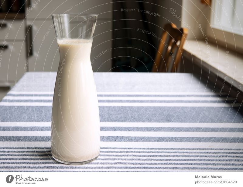 Fresh homemade plant milk in glass carafe standing on the kitchen table. Cozy atmosphere of interior, simply, plain healthy oat milk on tablecloth. Copy space.