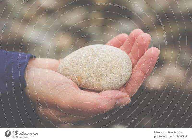 old | Oval smooth stone from the Baltic Sea beach lies on the palm of a woman's hand Stone To hold on by hand Woman 45 - 60 years Adults Pebble natural Calm