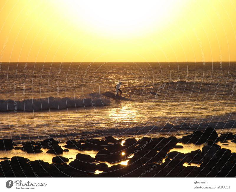 Sunset Surfing Back-light Ocean Beach shore
