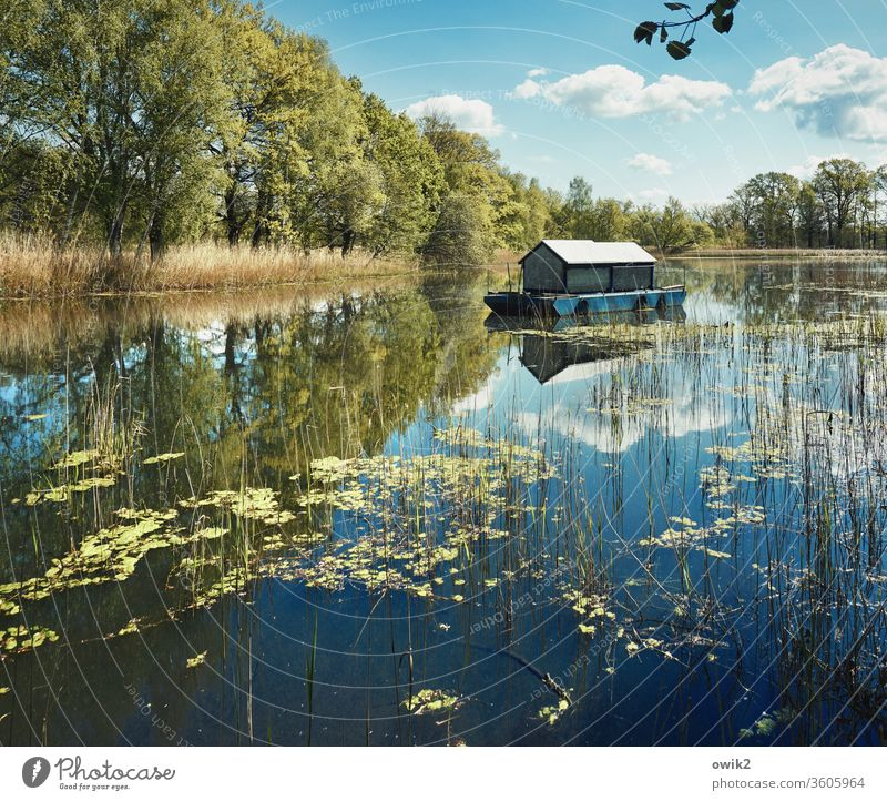 It dawdles Houseboat Mirror Lake Surface of water Watercraft tranquillity Idyll wide Reflection Exterior shot out Nature Sky Clouds Calm Environment Landscape