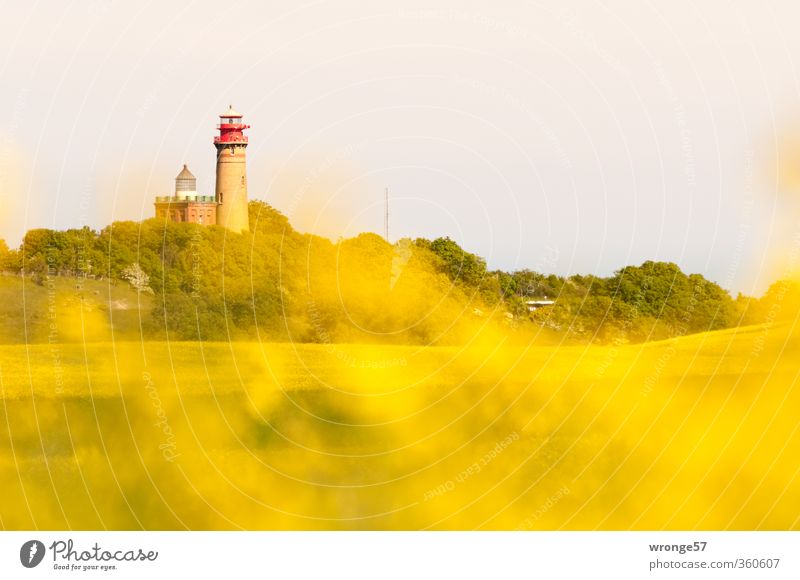 Yellow Architecture Germany Europe Tower Safety Vantage point Manmade structures Brick Navigation Lighthouse Tourist Attraction Mecklenburg-Western Pomerania