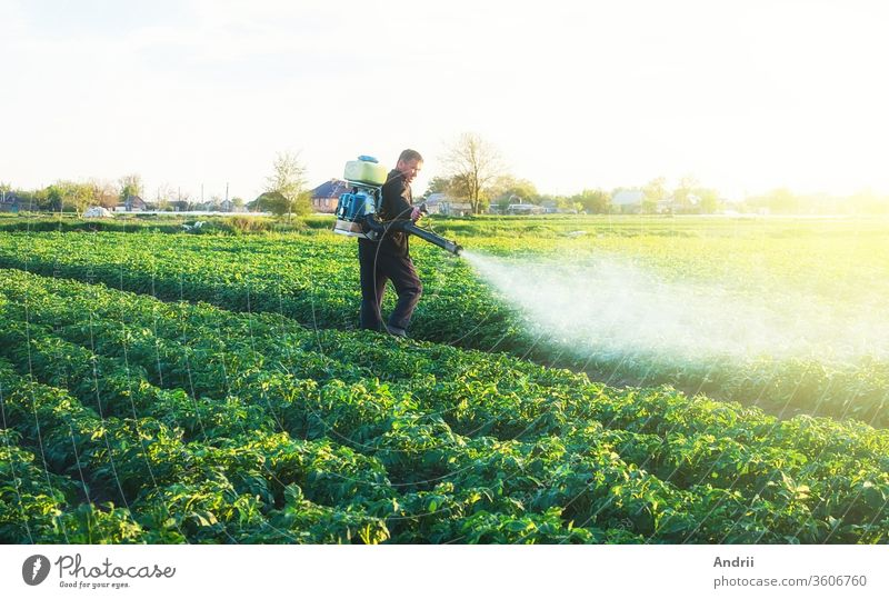 Farmer spraying a chemical copper sulfate on a potato plantation to protect against fungal infections. Agribusiness, agricultural industry. Crop protection. Modern technologies in agriculture