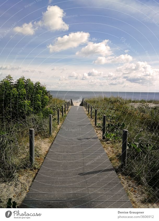 Wooden walkway that leads to the beach to the Baltic Sea coast sea wooden baltic dune horizon sand water coastal forest grass gulf hill jurmala latvia pine