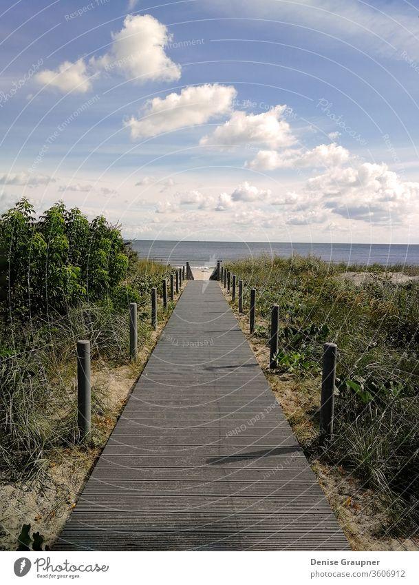 Wooden walkway that leads to the beach to the Baltic Sea coast sea wooden baltic dune horizon sand water coastal forest grass gulf hill jurmala latvia pine