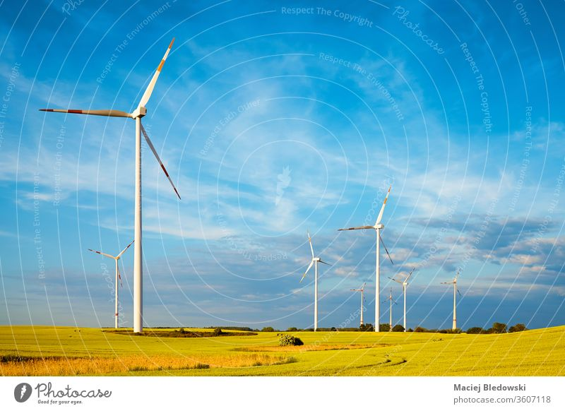 Windmill farm on a crop field. turbine wind nature sky electricity generator windmill propeller ecology industry rural technology green power renewable
