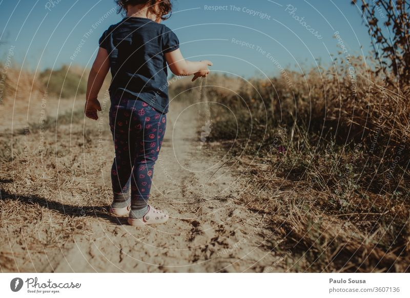 Rear view child playing with sand Child childhood Children's game outdoors Caucasian caucasian fun nature kid lifestyle happy Infancy happiness girl summer