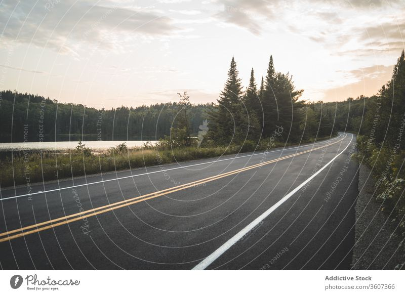 Asphalt road near lake and forest in evening sunset sky cloudy nature national park la mauricie quebec canada asphalt peaceful green calm tranquil countryside