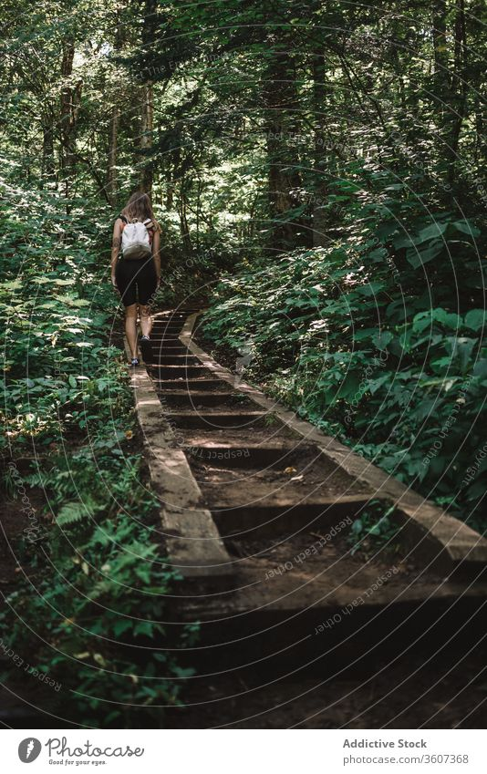 Anonymous woman walking in forest path travel explore joy weather la mauricie national park quebec canada female backpack lumber green nature tree adventure