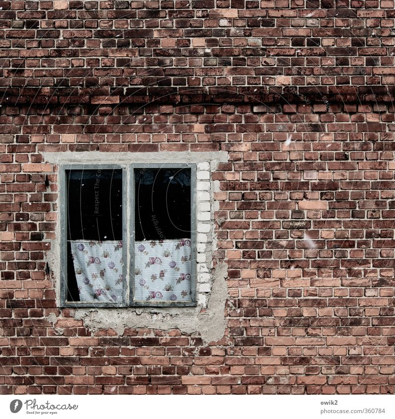 Old Window Wall (building) Wall (barrier) Facade Design Gloomy Transience Broken Past Pure Derelict Decline Brick Window pane Curtain