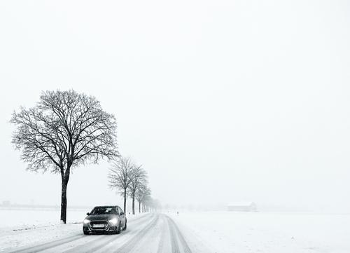 Winter in Bavaria, minimalist scene, white landscape with snow and fog, country road flanked by black trees with barren branches and a car coming bavarian