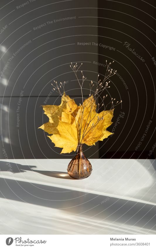 Beautiful seasonal dry bouquet of autumn yellow maple leaves. Indoor decoration. Interior autumn decoration. Home decor, simple, minimalistic dry floral arrangement.