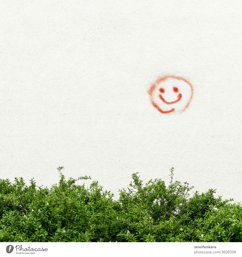 """""""Please be kind,"""" the red smiley face on the wall above the green bush Graffiti Smiley Red shrub Wall (building) Wall (barrier) Exterior shot Colour photo Sign"""
