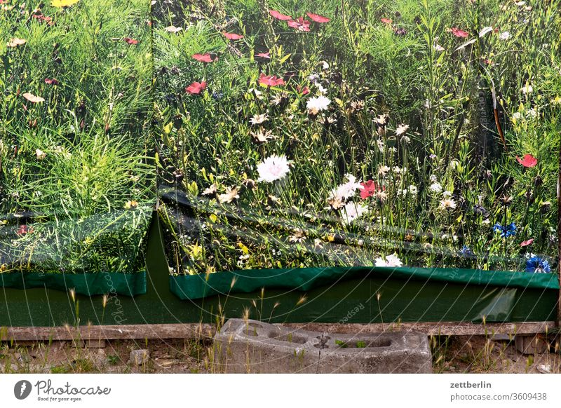 Poster for nature Nature Meadow Landscape quote Billboard Wrinkles Crack & Rip & Tear damages urban Environment Environmental protection flowers blossom