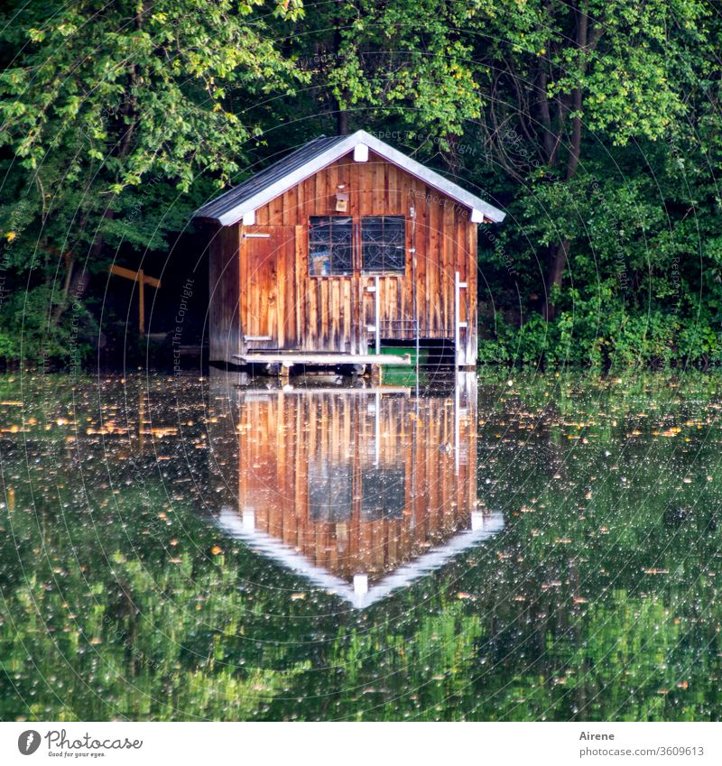 Symmetry | for constant days hut Boathouse Pond Lake Lakeside Forest Positive Relaxation Calm Loneliness Wooden house Reflection Mirror image
